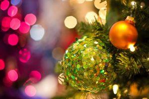Baumarten für Weihnachten